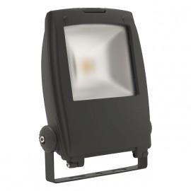 30 Watt Verstraler RINDO LED MCOB